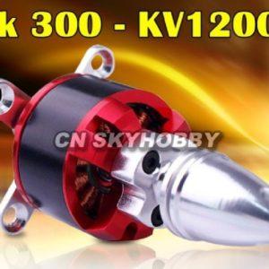 Park 300 C2822 C KV1200